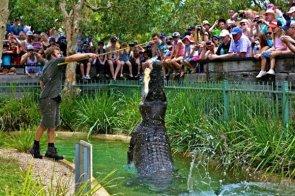 Reptile-Park